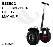 Self Balancing Utility Machine